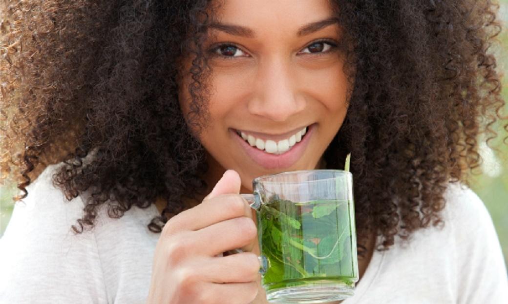 Sortie Atelier Cure detox avec les plantes sauvages médicinales et comestibles